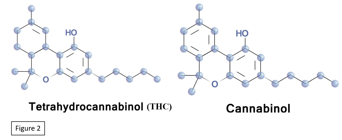 "Rimplejeet Kaur, Sneha R. Ambwani and Surjit Singh, ""Endocannabinoid System: A Multi-Facet Therapeutic Target"", Current Clinical Pharmacology (2016) 11: 110. https://doi.org/10.2174/1574884711666160418105339. Accessed on March 19, 2019"